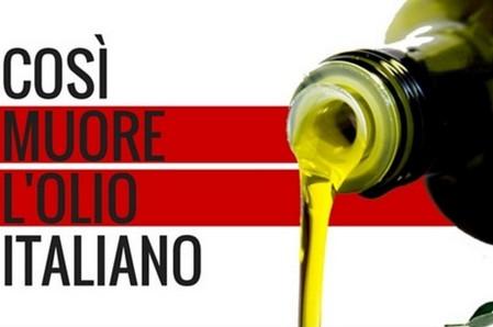 è+olio+extra+vergine+di+oliva+buono+per+la+disfunzione+erettile